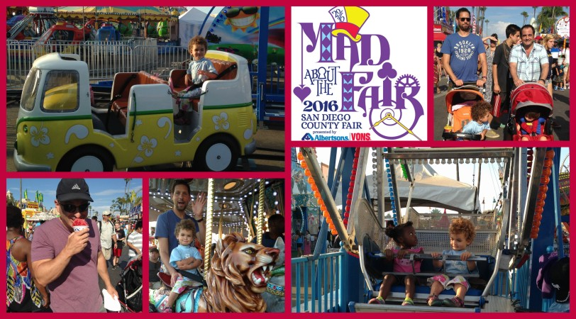 mad about the fair collage