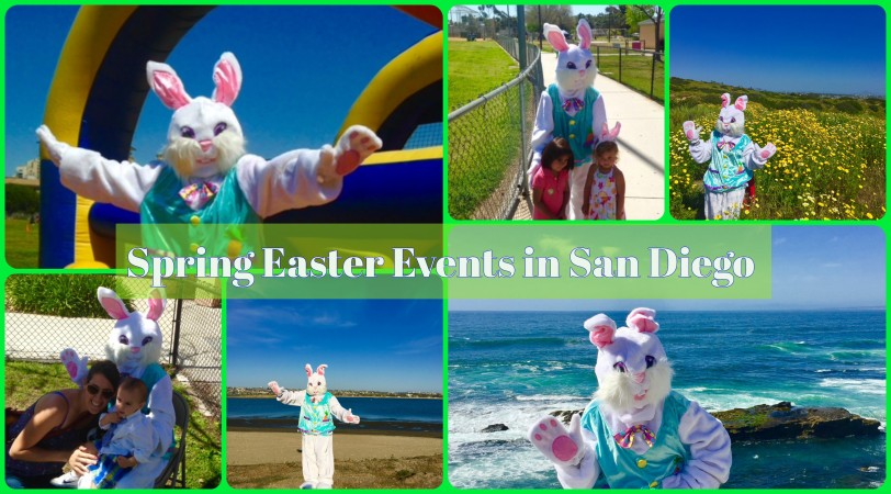 easter bunny collage sd